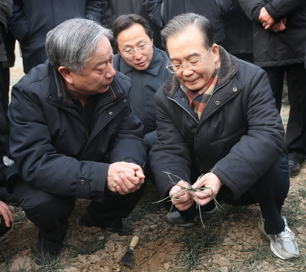 Premier Wen urges efforts to fight drought