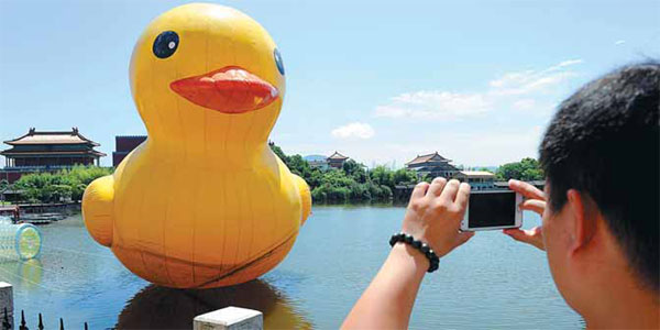 Ducks trigger copyright fears