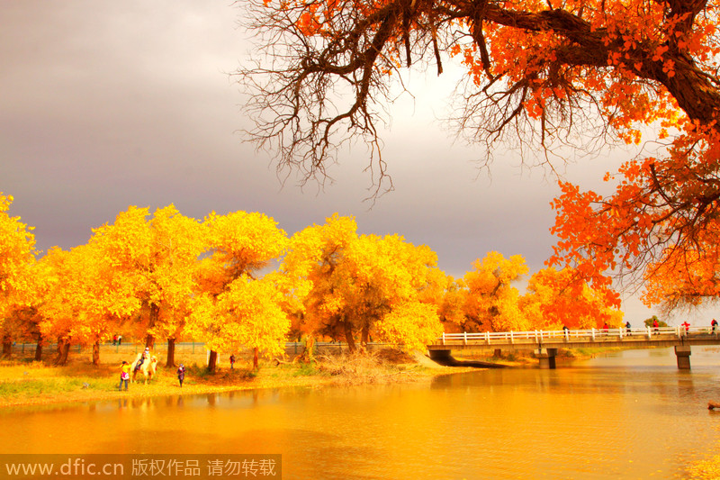 Top destinations in China for autumn photography