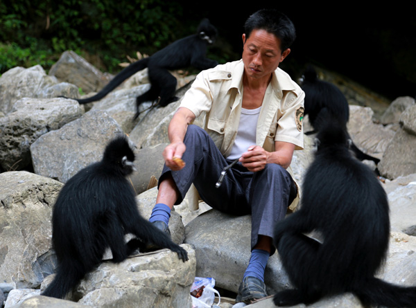 Tamer takes care of rare-monkey business