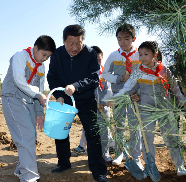 Xi plants roots of green awareness