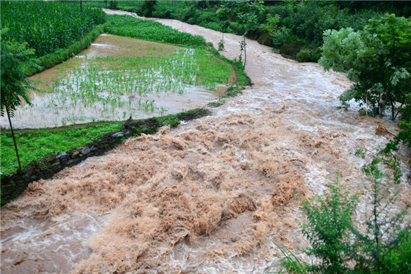 Heavy rain, flood hit many parts of China