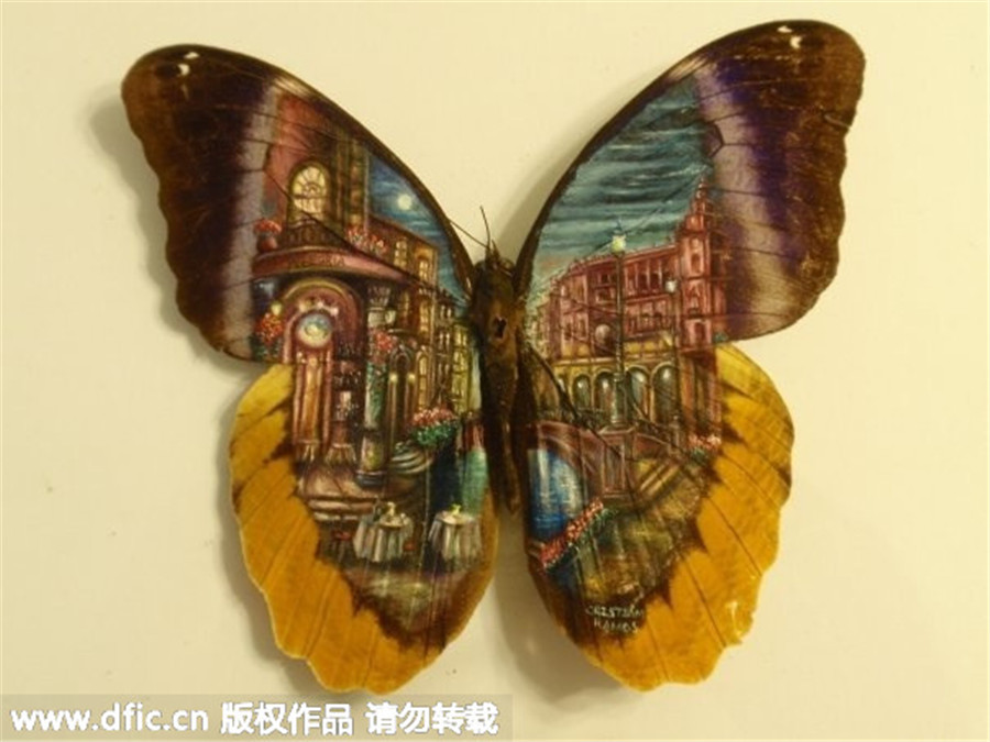 Painter uses butterfly wings as canvases