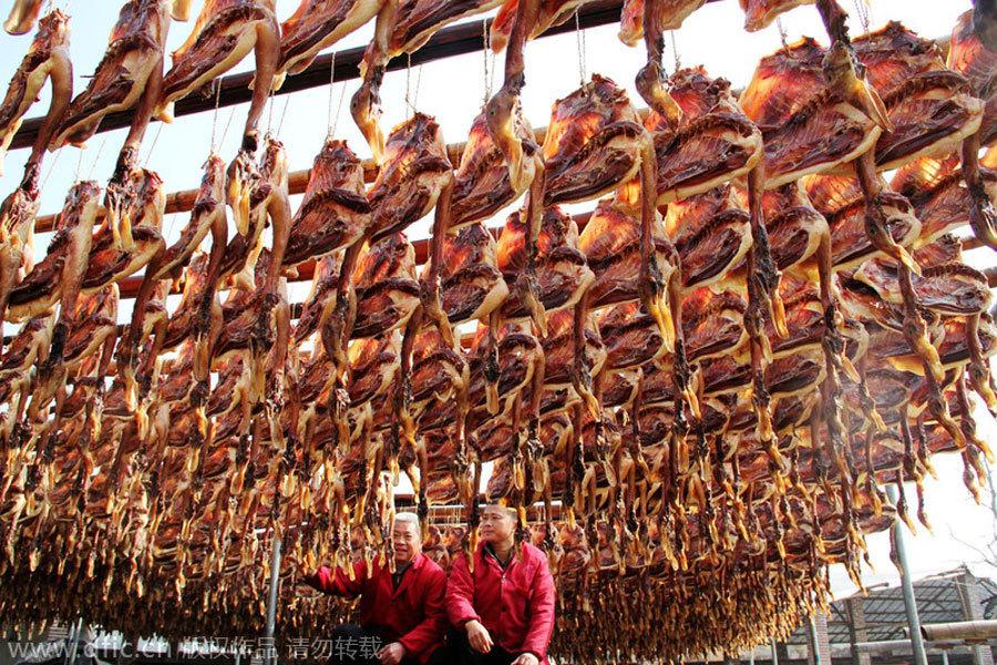 Chinese Food Usa