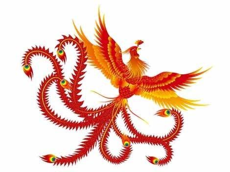Chinese phoenix auspicious bird rising from ashes voltagebd Choice Image