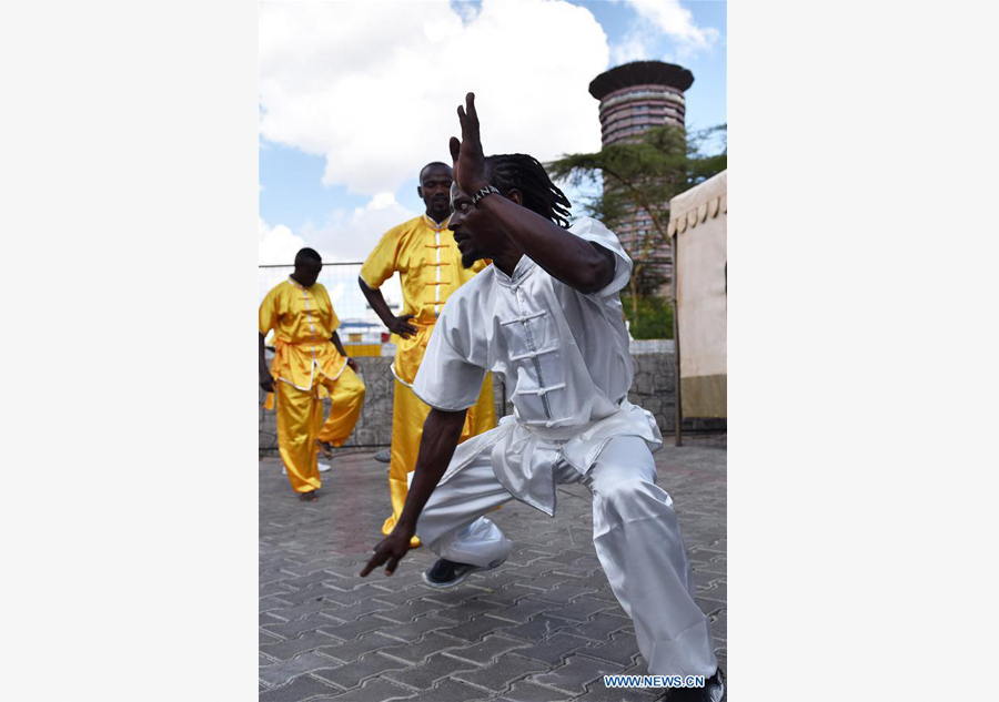 Kungfu Festival kicks off in Kenya[3]chinadaily.com.cn